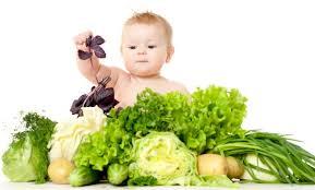первые овощи