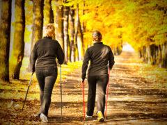 Нордическая ходьба – спорт для каждого