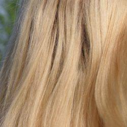 Куда деть обстриженные волосы