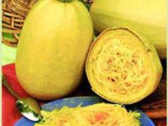 Кабачки и цукини – овощи для похудения и детоксикации