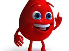 Анализ составных частей крови